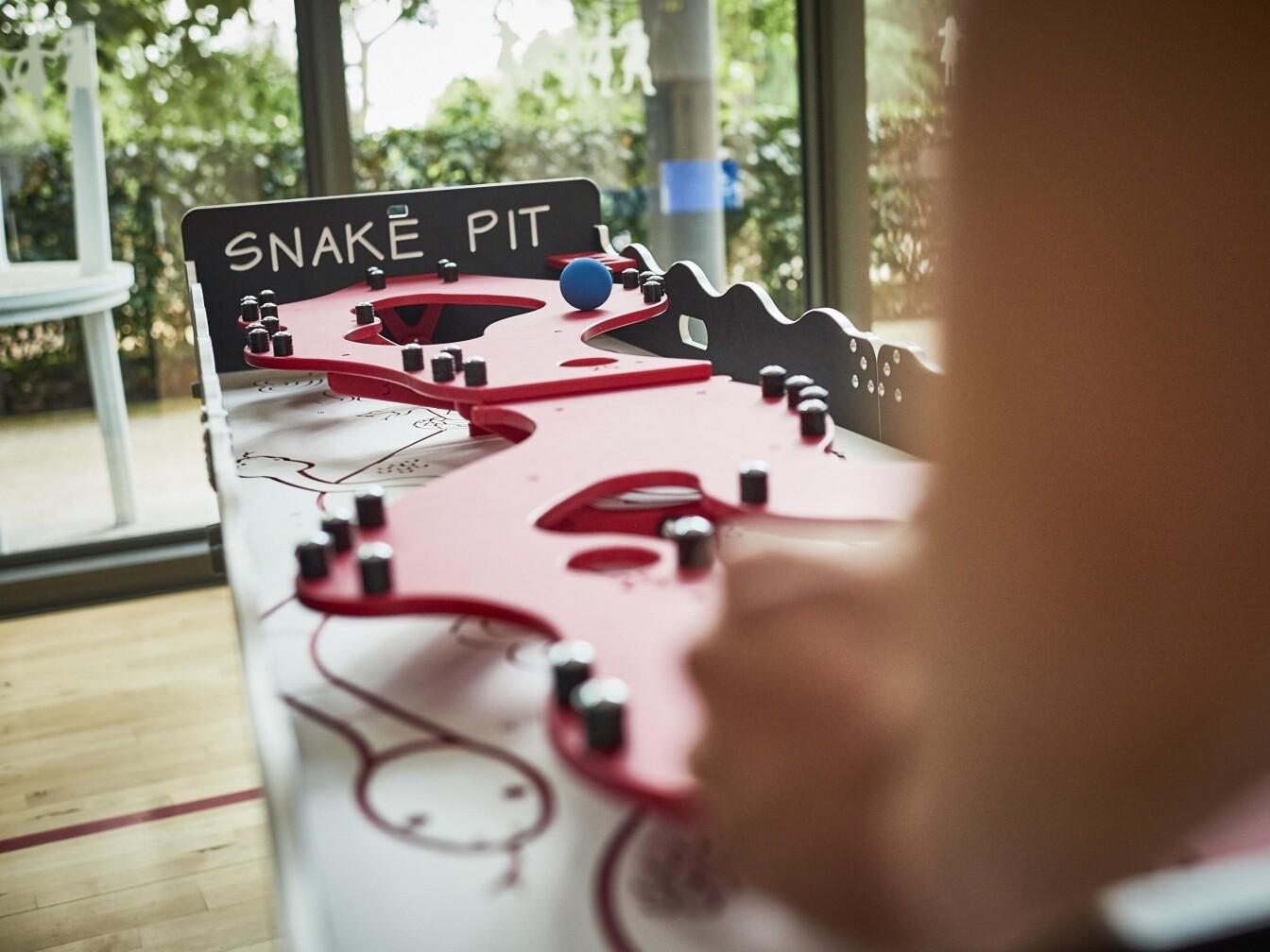 Snake Pit Nostalgic Games Hire London