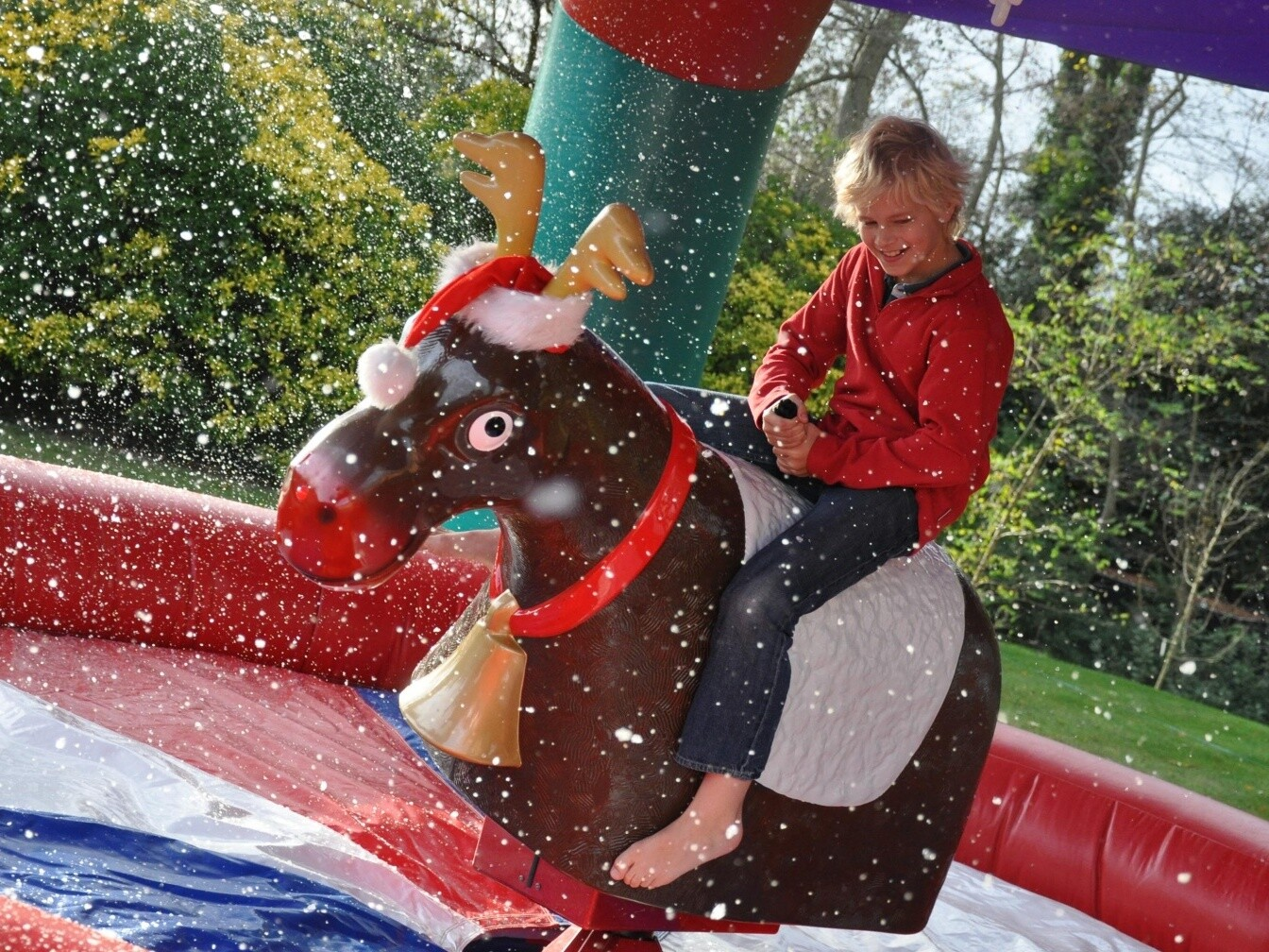 rodeo reindeer school fair