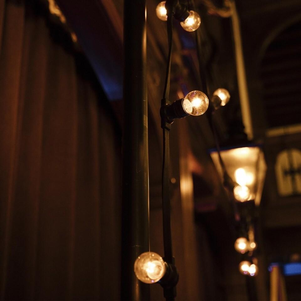 Festoon lamp posts Rhinefield house