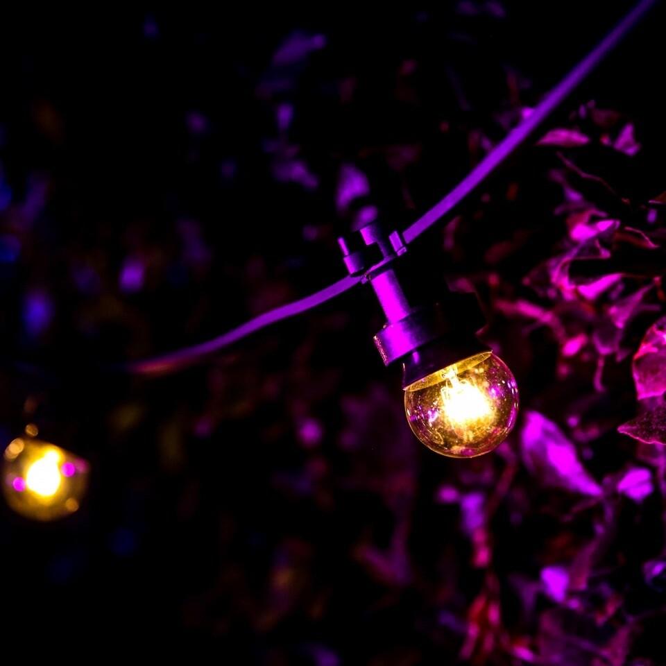 Garden Lighting Festoon and Coloured Uplighters Hire London Surrey Woodlands