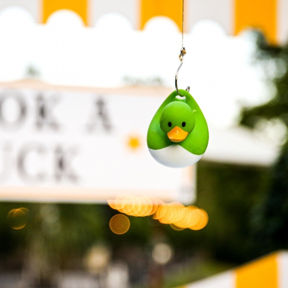 Hook a Duck Sidestalls Hire London Surrey Summer Party Woodlands