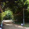 Shinnyo walkway 2