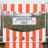 Coconut shy 7