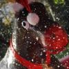 Rodeo Reindeer Fun