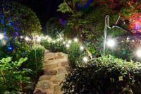 Festoon Outdoor Lighting