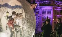Snow globe photographer Clownfish events