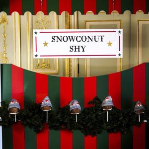 Christmas Coconut Shy Hire Fetcham Set up