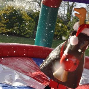 rodeo reindeer3