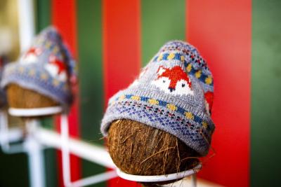 Christmas Coconut Shy Hire Fetcham